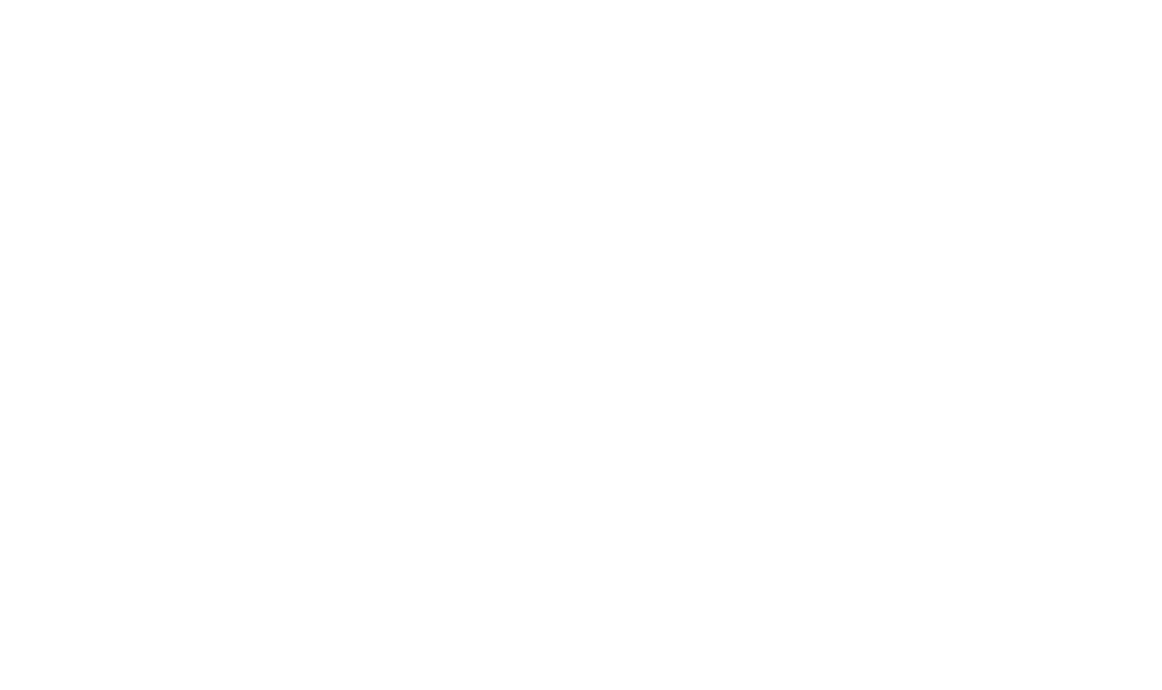 Dutch Coding Company